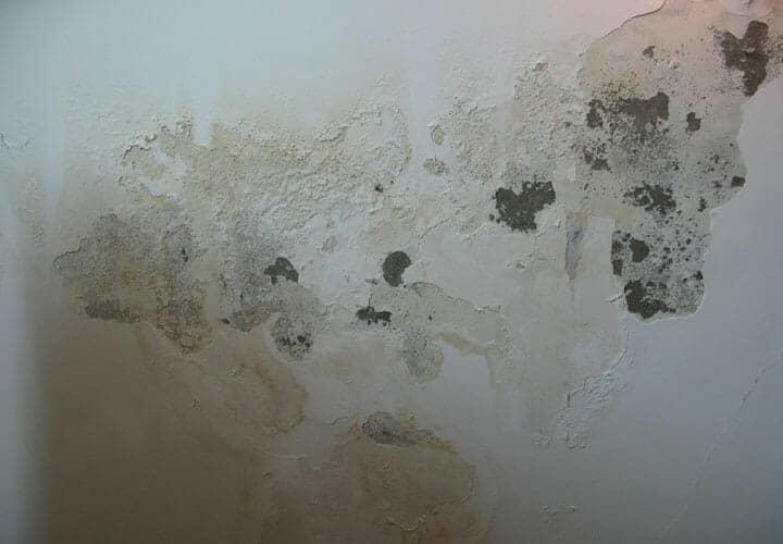 Hiện tượng thấm dột trần nhà